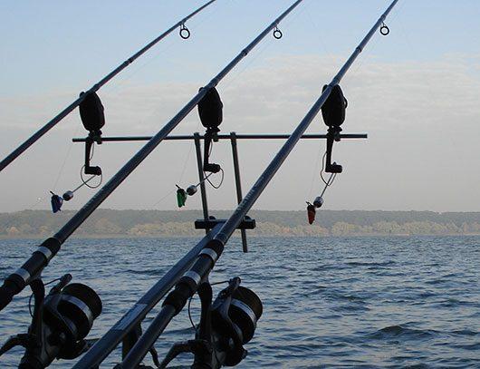 Выбор удилища для рыбалки