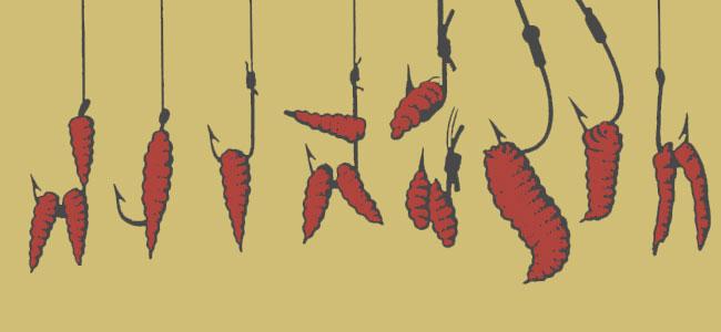 Способы насадки мотыля на крючок
