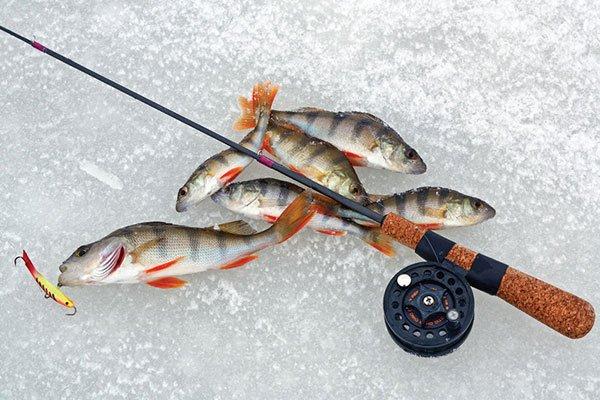 Рыбалка на зимний спиннинг