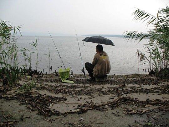 Влияние дождя на рыбалку