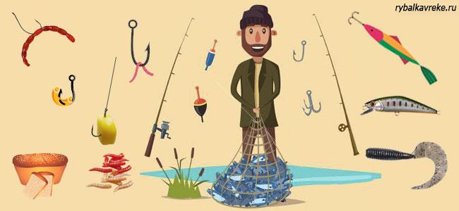 На что ловится рыба разных видов