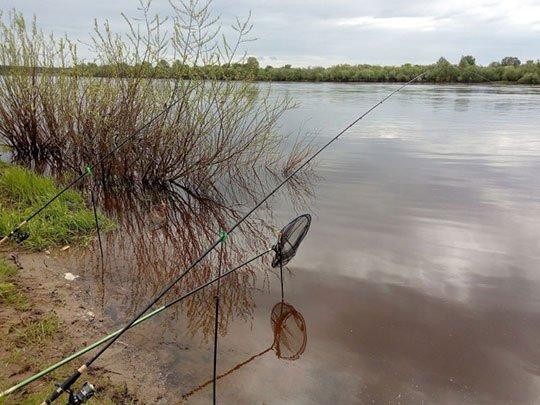 Выбор снастей для рыбалки