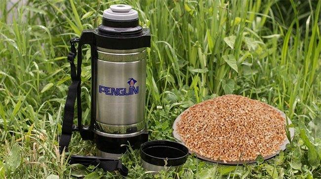 Использование пшеницы в качестве прикормки