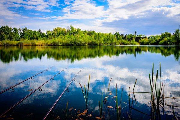 Влияние направления ветра на рыбалку