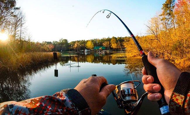 Выбор времени года для рыбалки