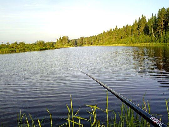 Рыбалка в разное время суток