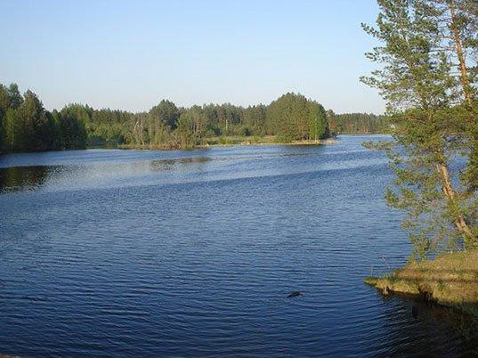 Воздействие температуры воздуха на рыбу