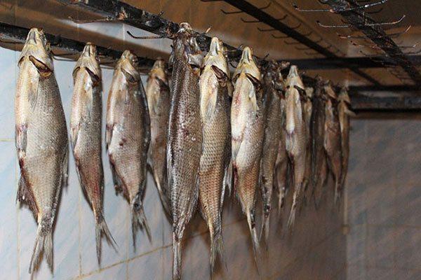 Подготовка рыбы к вялению