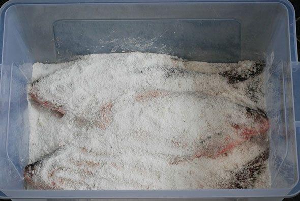 Правила засолки рыбы